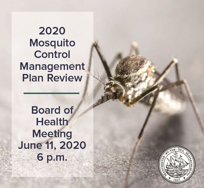 Mosquito plan (3)