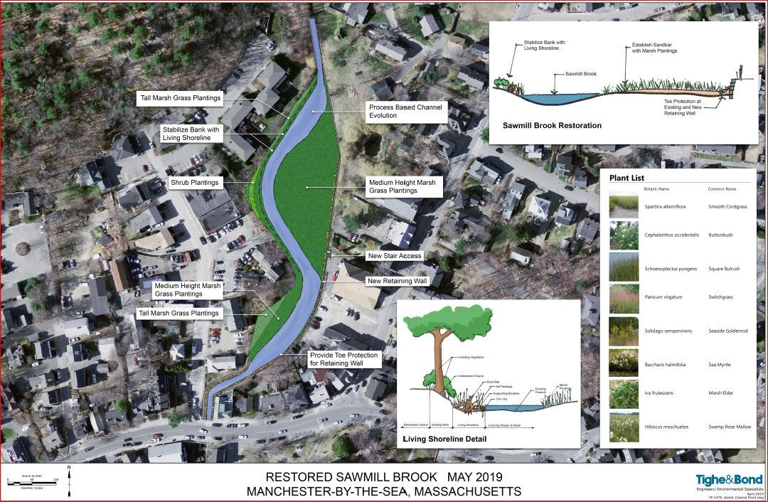 Central Pond Restoration Conceptual Planting Plan